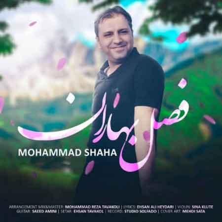دانلود آهنگ جدید محمد شاها فصل بهاران
