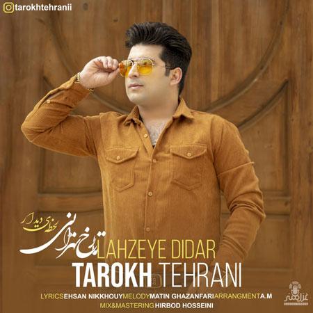 دانلود آهنگ جدید تارخ تهرانی لحظه دیدار